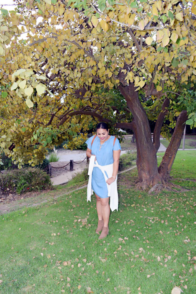 chambray dress for fall